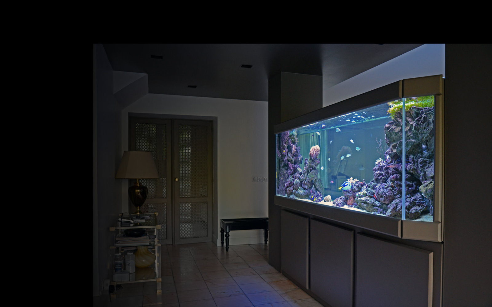 Aquarium emeraude aqua art design - Meuble aquarium sur mesure ...